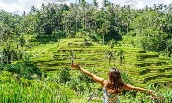 adi ubud tour-professional tour guide and speaking English driver-bali tour guide- interesting place in Bali-Tegallalang ceking terrace -rice paddy terrace Bali