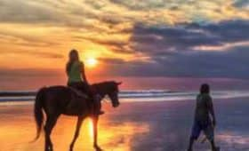 bali horse riding at beach - horse riding price - adi ubud tour - adi ubud tour, professional tour guide and speaking English driver, bali tour guide, private bali driver, interesting place in Bali